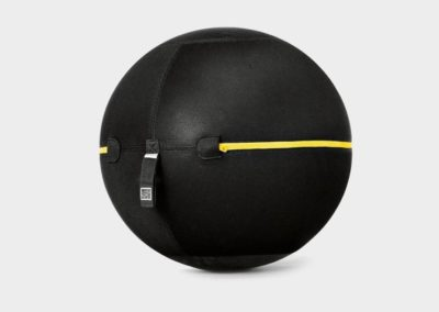 Wellness Ball Technogym € 100,00